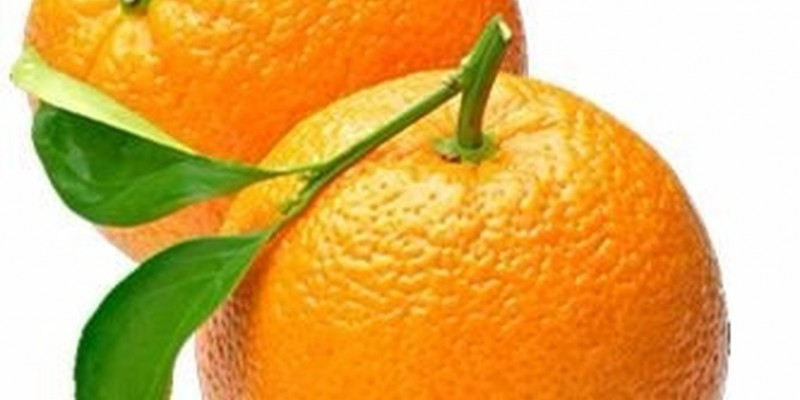 fornecedores/2019/06/laranja-barao.jpg