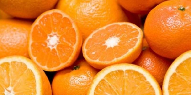 fornecedores/2019/06/laranja-caipira.jpg