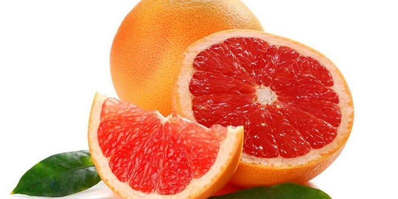 fornecedores/2019/08/laranja-grapefruit.jpg